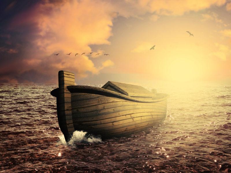 Noah's Ark 2005 | Bible Teaching Notes